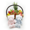 公司送禮品果籃:小型16吋初生嬰兒送禮品果籃