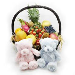 公司送禮品果籃:中型19吋初生嬰兒送禮品果籃